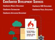 Php codeigniter development services