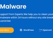 Fix malware - professional malware removal service