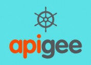Apigee online training
