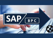 Learn sap bpc real time training @proexcellency