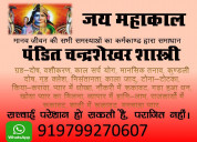 Astrologer mr. chandrashekhar shastri,