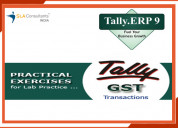 Tally erp 9 course in new delhi ncr sla consultant