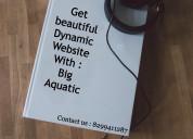 Big-aquatic : create your own digital world with u