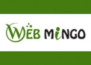 Webmingo provide best seo service in india