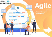 What is agile project management methodology ?
