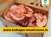 Fresh mushrooms to buy in ahmadnagar.