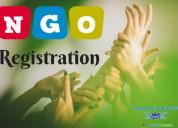 Ngo registration process