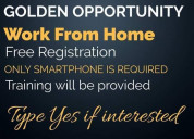 Are you looking for the way to earn money from hom