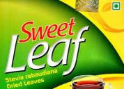 Organic sweet leaf (stevia)