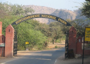 Hotels and resorts in ranthambore national park