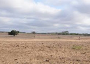 5250 sq.yards. industrial plot for sale at dholera