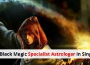 No.1 black magic specialist astrologer in singapor