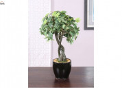 Browse artificial plants online at wooden street