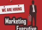 Software marketing executive