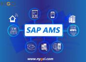 Sap application management services (sap ams)