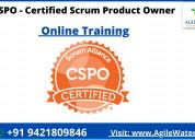 Cspo certification training