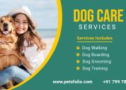 Dog walking, dog grooming, dog training, dog board