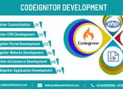 Codeigniter development services in india