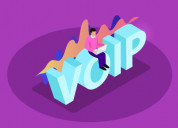 How to start voip business?