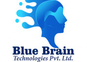 It solution company based in delhi