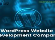 The best custom wordpress development company
