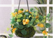 Choose a ideal hanging flower pots at woodenstreet