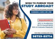 Study abroad | universal dreams
