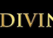 Open up your business prospects with diviniti