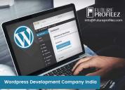 Professional wordpress development company india