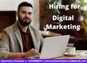 Hiring for digital marketing executive