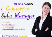 E-commerce sales manager