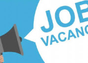 Available part time and full time job male/female