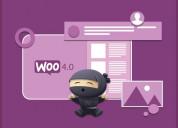 Woocommerce development services in india | wordpr