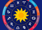 Best astrologer in fraser town | famous & top astr