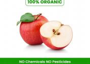 Buy apple fruit online in pune