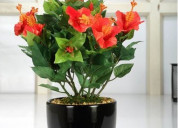 Decor your home with artificial plants