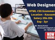 Hiring for website designer