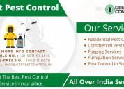 Pest control in chennai, get pest control