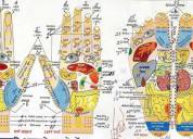 Master diploma in ayurvedic acupressure