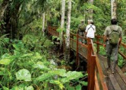 Eco tour packages