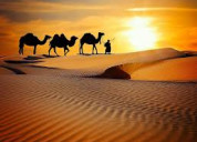 Rajasthan offer desert safari