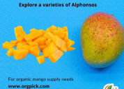 Alphonso mango online