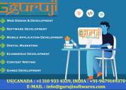 Guruji softwares is a premier it service provider