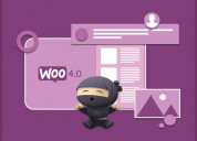 Woocommerce development services - want to migrate