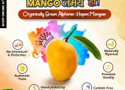 Buy hapus mangoes online