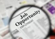 Vacancies for business executive jobs