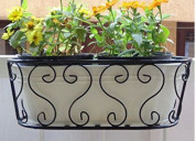 Select a railing pots for home at wooden street