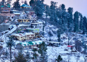 Special offer on shimla tour holidays package