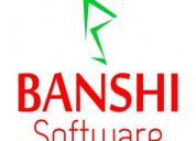 Website designing in rajasthan - banshisoftware