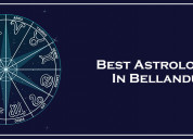 Best astrologer in bellandur | famous astrologer